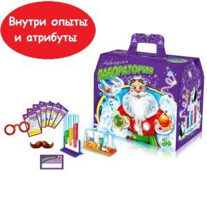 novogodnyaya-laboratoriya1